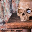 Halloween skull with glass eye — Stock Photo