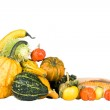 Plenty of gourds — Stock Photo