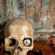 Skull with glass eye — Stock Photo