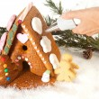 Stock Photo: Decorating a gingerbread house
