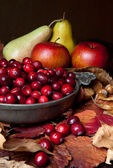Apples and cranberries — Stock Photo