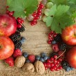 Thankgiving board with autumn berries — Stock Photo