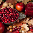 Thanksgiving fruits — Stock Photo #13480861