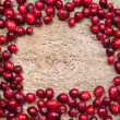 Frame of cranberries — Stock Photo