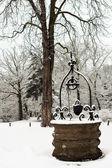 Pozo de agua nieve — Foto de Stock