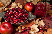 Thanksgiving fruits — Stock Photo