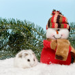 White hamster in the snow - Stock Photo
