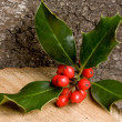 Holly on wood — Stock Photo