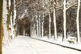 снежный переулок — Стоковое фото