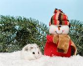 Hámster blanco en la nieve — Foto de Stock