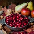 Autumn cranberries and nuts — Stock Photo