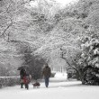 Snow walk — Stock Photo