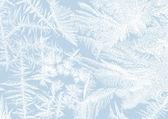 Frost stars — Stock Photo