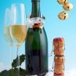 Merry corks — Stock Photo