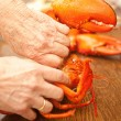 Cracking a lobster — Stock Photo
