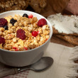Crunchy cereals bowl — Stock Photo