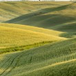 Rolling hills of Tuscany — Stock Photo #17415103