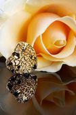 Golden yeart yellow rose — Stock Photo