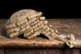 Genuine barrister's wig — Stock Photo