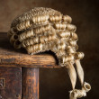 Court wig — Stock Photo #23607317