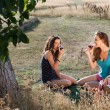������, ������: Tasting wine on a picnic