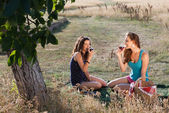 Tasting wine on a picnic — Stock Photo