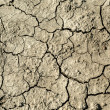 Barren soil — Stock Photo