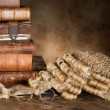 Stock Photo: Lawyer's wig and books