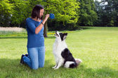 Playing fetch with her dog — Stock Photo