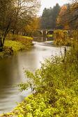 Semois in autumn — Stock Photo