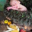 Autumn baby — Stock Photo