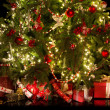 Under the christmas tree — Stockfoto #32188733