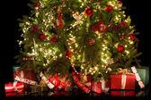 Onder de kerstboom — Stockfoto