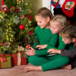 Foto Stock: Three girls and a christmas tree