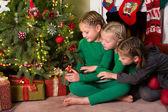 Three girls and a christmas tree — Stockfoto