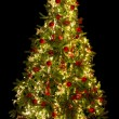 Illuminated christmas tree — Stockfoto