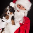 Puppy gift from santa — Stock Photo
