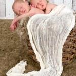 Twin baby basket — Stock Photo