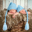 Baby basket with twins — Stock Photo
