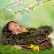Sleeping african spring baby — Stock Photo #38135673