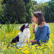 Dog reprimand — Stock Photo