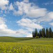 Rolling hills of Tuscany — Stock Photo #46438105
