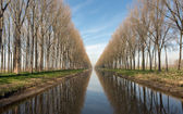 ベルギーのブルージュの近くで運河します。 — ストック写真
