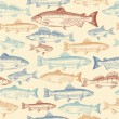 Seamless pattern with hand drawn fish — Stock Vector #27499591