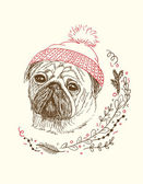 Pen and ink illustration of cute dog in small red beanie — Stock Vector