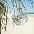 Stock Photo: Christmas ball hangs from tree at beach