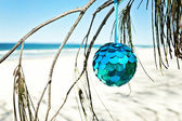 Blue bauble hangs from a tree at the beach — Stock Photo