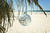 Glass christmas ball hangs from a tree at the beach — Stock Photo