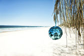 A blue bauble hangs from a tree at the beach — Stock Photo