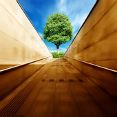Tunnels and trees — Stock Photo